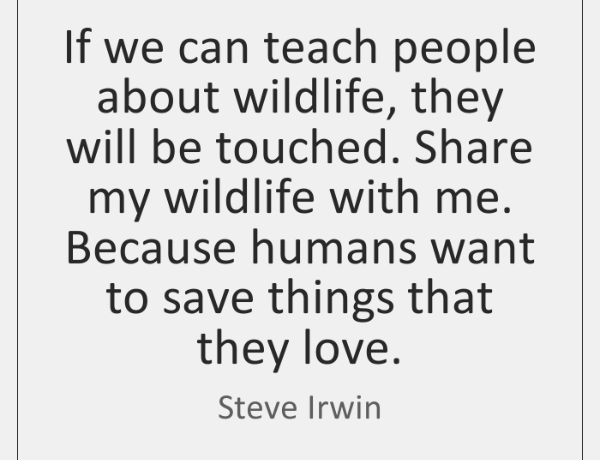 Thinking of our wildlife.